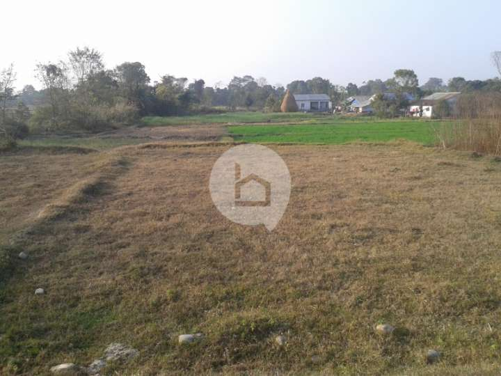 Land for Sale in Madi