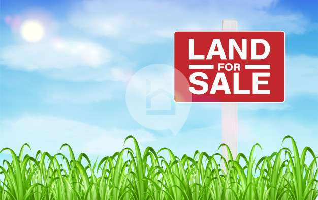 Land for Sale in Tinchule