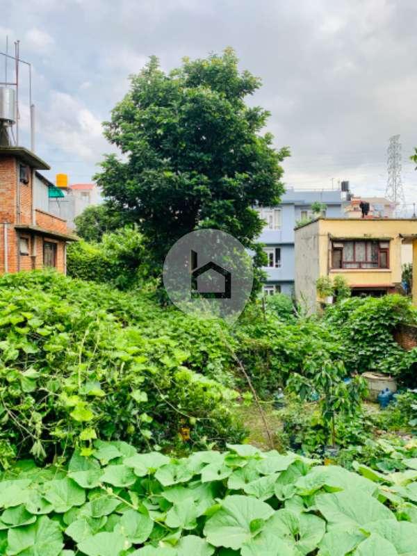 Land for Sale in Jawalakhel