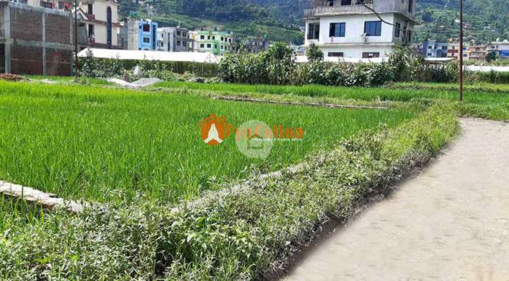 Land for Sale in Dahachowk, khahare