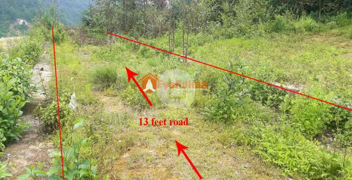 Land for Sale in Ramkot