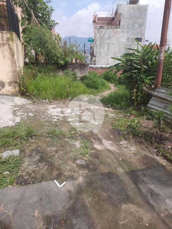 Land for Sale in Kalanki