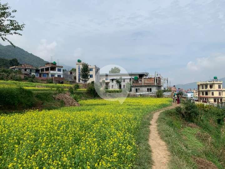Land for Sale in Matatirtha