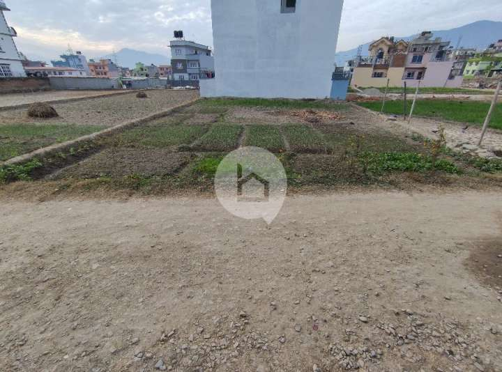 Land for Sale in Pasikot