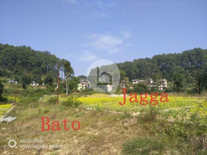Land for Sale in Jharuwarashi