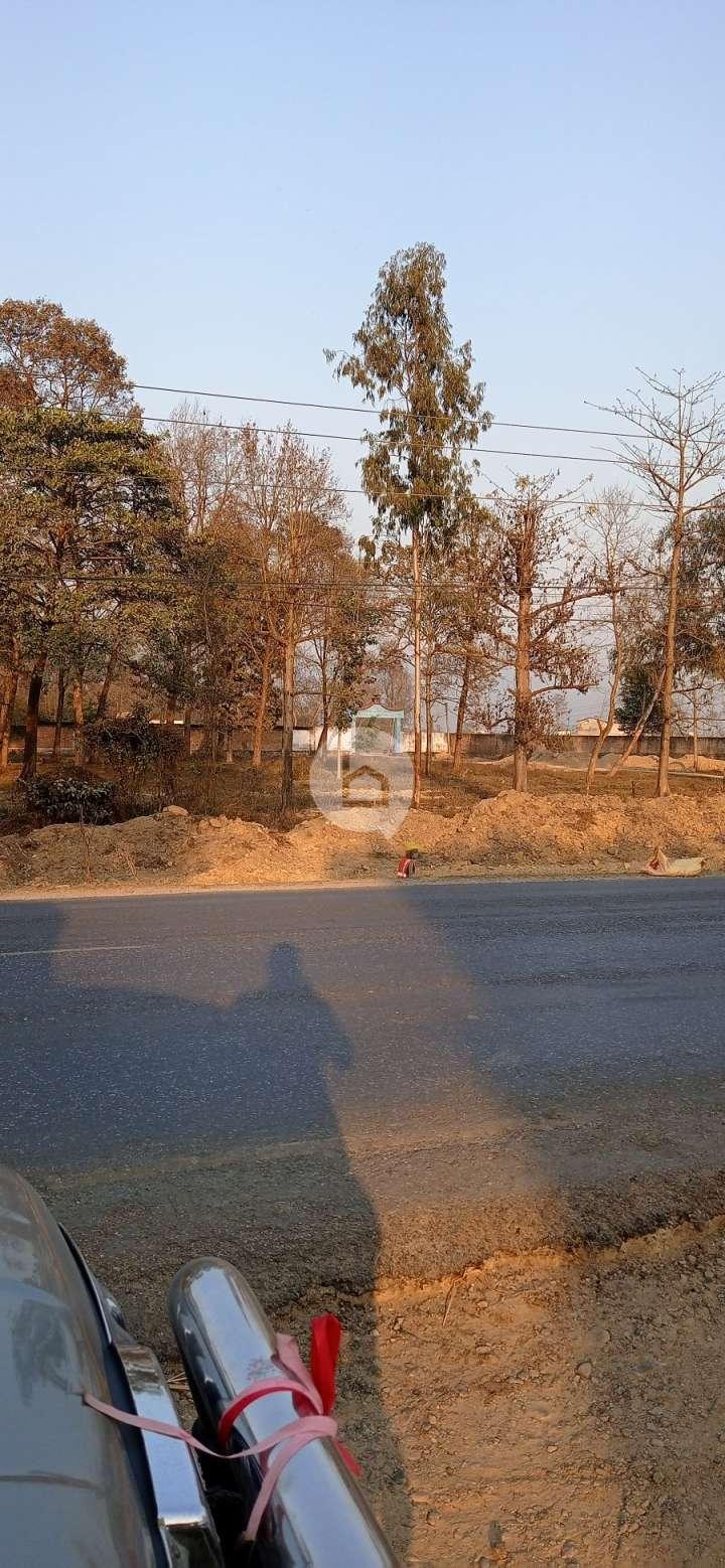Land for Sale in Nawalparasi