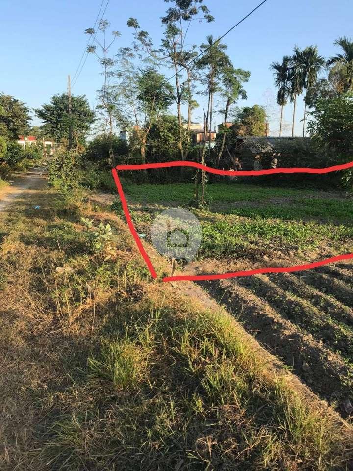 Land for Sale in Birtamod