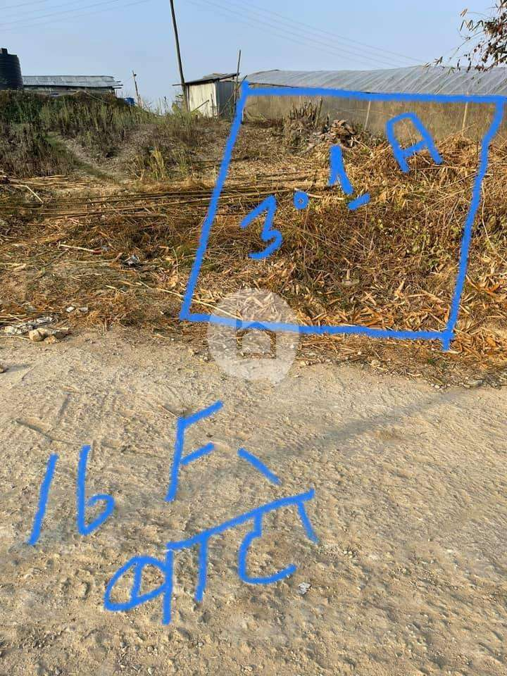 Land for Sale in Lubhu