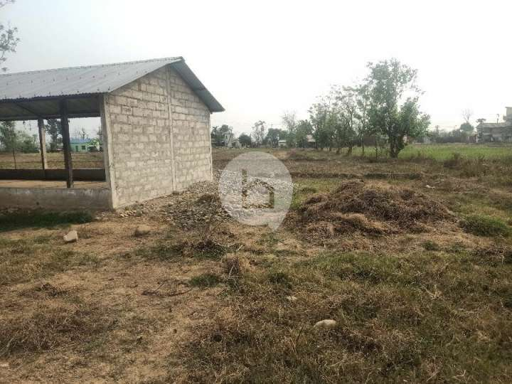 Land for Sale in Birendranagar