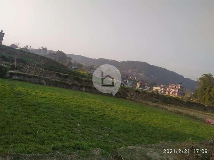 Land for Sale in Kharipati