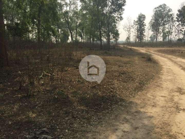 Land for Sale in Dhanusadham