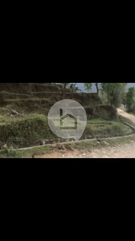 Land for Sale in Baidam