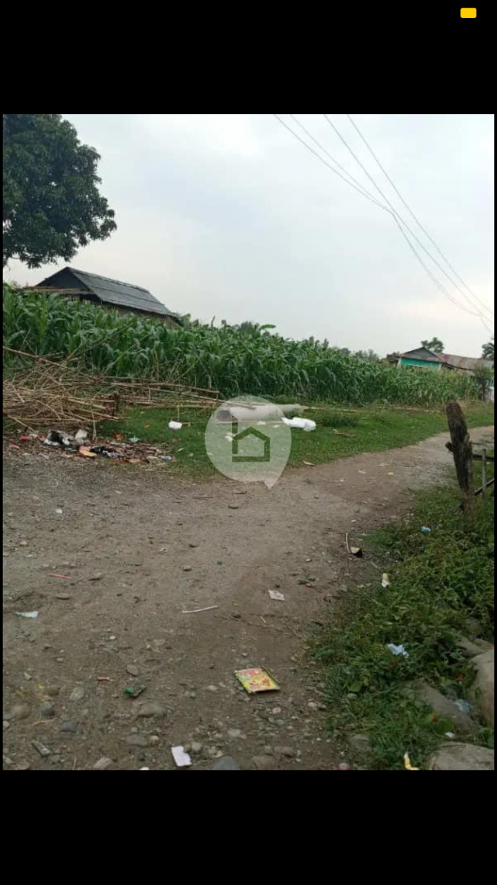 Land for Sale in Pathari