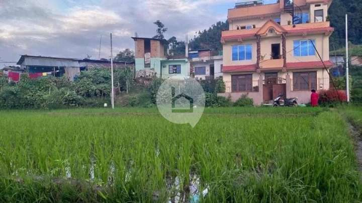 Land for Sale in Jagati