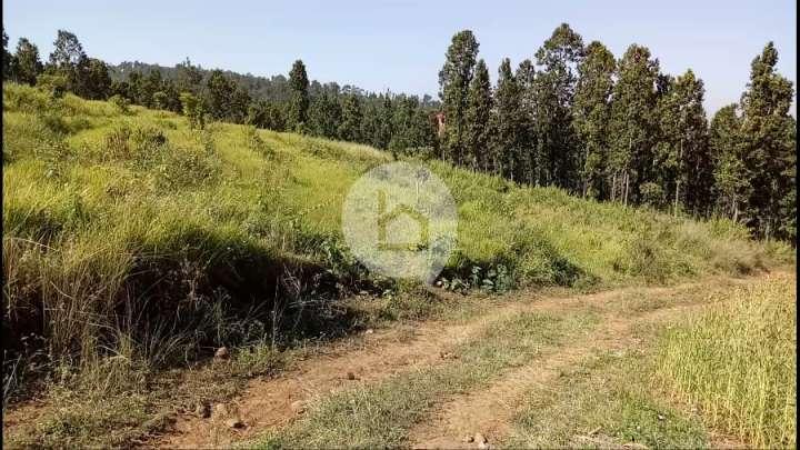 Land for Sale in Hetauda