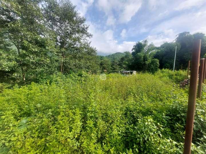 Land for Sale in Pasikot